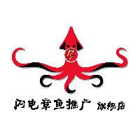 闪电章鱼营销团队