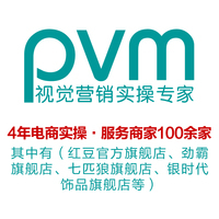 PVM视觉营销