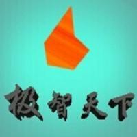 上海极智天下科技有限公司
