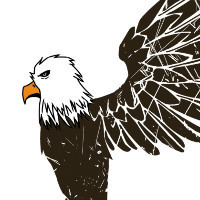 渴望飞翔的鹰