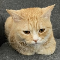 七K创意工作室