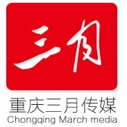三月传媒整案营销推广