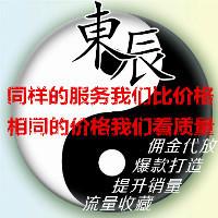 東辰网络推广