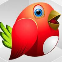 红鸟网络棋牌游戏软件开发