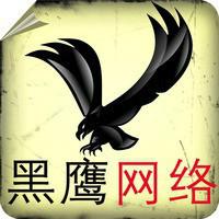 武汉黑鹰网络1