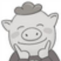 猪丶在天上飞