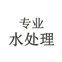 大志20081