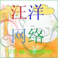 汪洋-软件开发