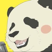 熊猫记 Studio