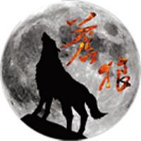 苍狼科技股份有限公司
