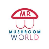 蘑菇世界MUSHROOM