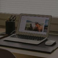网页网站开发