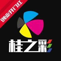 南宁桂之彩网络设计公司