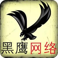 武汉黑鹰网络团队
