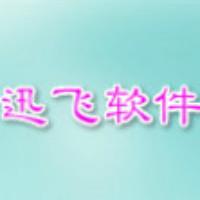 广州迅飞软件开发