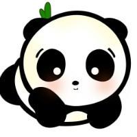熊猫语言翻译工作室