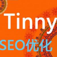 Tinny_SEO优化