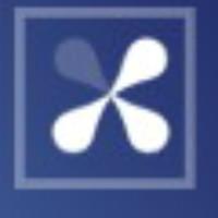 股份制银行全职开发团队