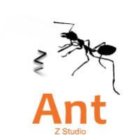蚂蚁z工作室