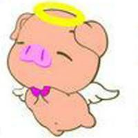 小小一个猪