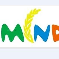 mindstrans