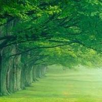绿景苑景观设计