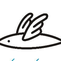 飞飞鱼设计