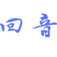 广州回音信息技术有限公司