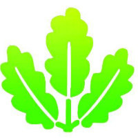 绿色建筑及节能咨询服务