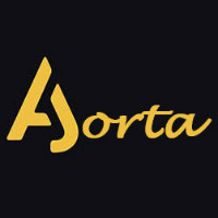 Aorta工作室