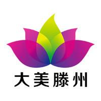 微枫网络电商设计