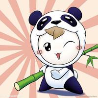 江湖初级熊猫