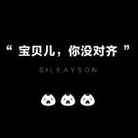 Sileayson设计(斯雷森)
