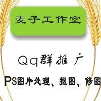 麦子网络营销