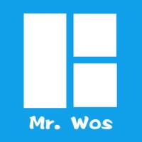 Mr. Wos