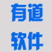广州有道软件定制