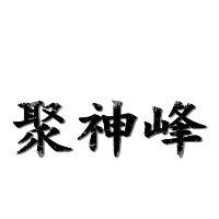 聚神峰商务策划旗舰店