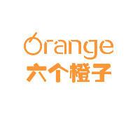 六个橙子数字营销