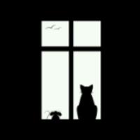 voidcat