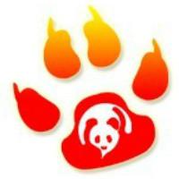 熊猫网络传媒