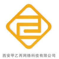甲乙丙网络科技有限公司