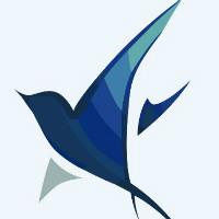 百灵飞网络科技