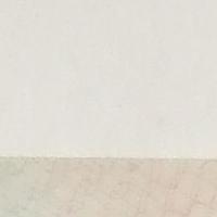 望远2000