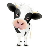 里约热内卢的奶牛