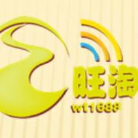 杭州旺淘刘文龙