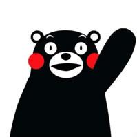 熊本熊888