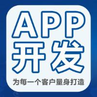 专业电商APP开发