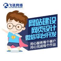 飞讯网络网页设计