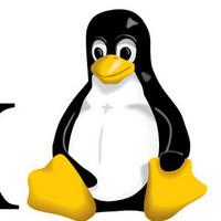 WEBPHP开发者