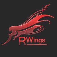 红翼游戏设计